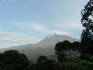 Mt. Kilimanjaro is the tallest freestanding mountain on earth at 19,500'.